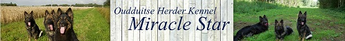 K151 Miracle Star banner